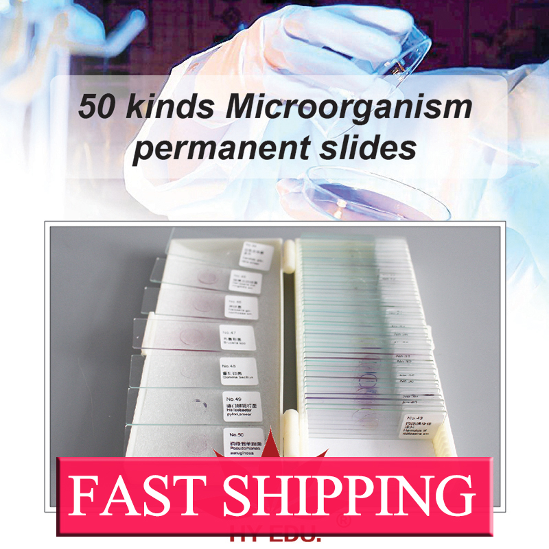 Fixed 50 kinds set typical bacteria microbiology prepared slides fixed set teaching resources university students study 78pieces medical parasite prepared microscope slides
