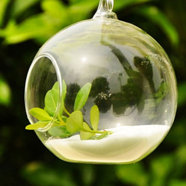 Lovely Ball Shaped Clear Hanging Glass Vase
