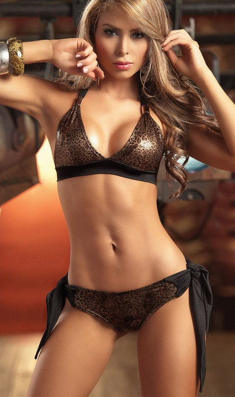Brown Sexy Lingerie Womens Bikinis Two Piece Animal Print -3153