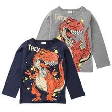 Dinosaur Printed Siblings Matching Boy's Sweater