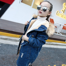 2017 children kids girls denim jacket large fur collar cotton denim outerwear Autumn Winter plus thick velvet jacket for girls
