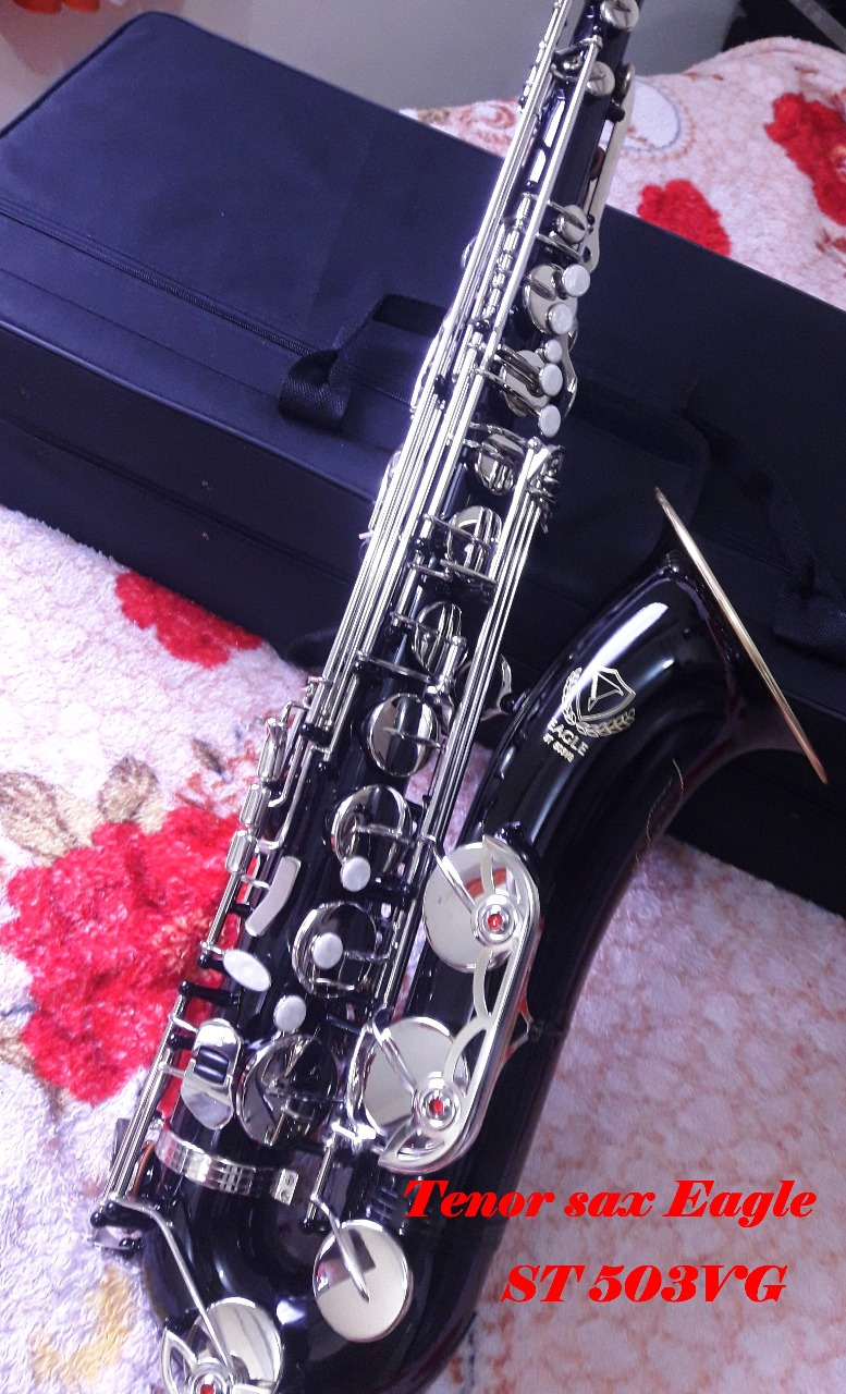 Customize Professional EAGLE ST503VG Bb Tenor Saxophone Nickel Silver key Black nickel body +case