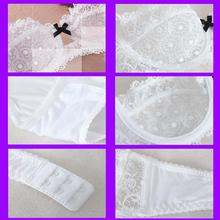 New Lace Bra Brief Sets Transparent Push Up Bra Set Women Sexy Underwear Set VS Secret Brand Intimates 2017 Sexy Lingerie Set