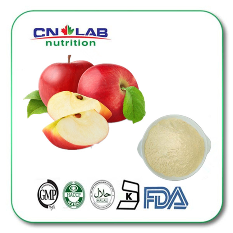 100% Natural Apple Fruit Extract Powder Polyphenols Apple Powder
