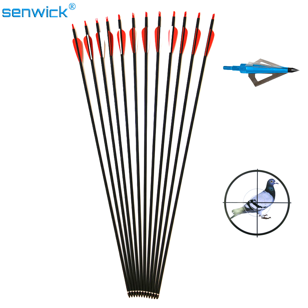 12 x Carbon Arrow Spine 500 With Replaceable Arrowhead 32 Length Archery for Compound Recurve Bow