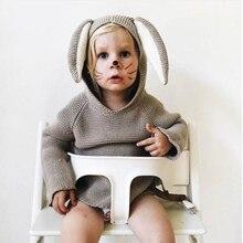 2017 Nouveau Printemps Automne Enfants Coton Lapin Style Longue Oreille Chandails à capuchon Pour Garçons Filles Bébé Automne Chandail En Tricot Vêtements Cardigan