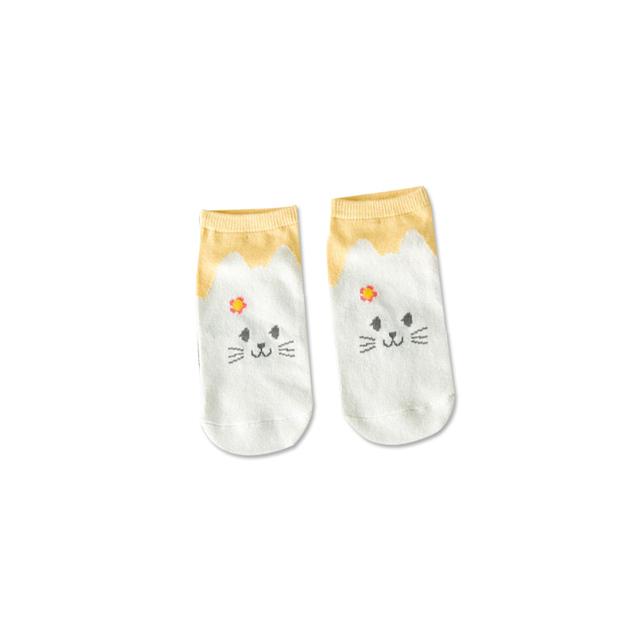 Damskie skarpetki w kotki różne kolory