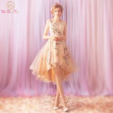 Walk Beside You Short Front Long Back Homecoming Dresses Pink Lace Colorful Applique Embroidery Party Graduation