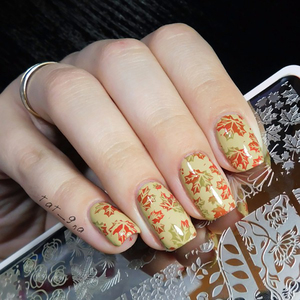 Image 4 - נולד די נייל Stamping צלחות תחרה פרח בעלי החיים דפוס בול פלייט תמונת תבנית סטנסיל ציפורניים כלי