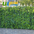 48pcs 10 x10 Artificial Ivy Fencing Privacy Grass Fence Plastic UV Decorative Boxwood Topiary Bush Hedges For Garden G0602A009