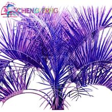 Free Shipping 30pcs Blue Palm Seeds Variety Bonsai Japan Giant Cycas Tree Plants For Home Garden Decoration