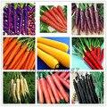 500 unids/bolsa zanahoria semillas, semillas de hortalizas de frutas, 9 colores a elegir, dulce y saludable, instalaciones para jardín de su casa