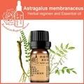 100% чистый завод Травяные Астрагал mongholicus Milkvetch Root травяное масло 5 мл Эфирные масла Астрагала перепончатого