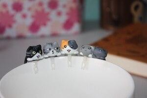 Image 3 - Оптовая продажа kpop kawaii оригинальное качество Chis cat противопылевая заглушка для сотового телефона ks милый аниме разъем для ушей в разных стилях
