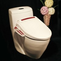 Intelligent toilet seat automatic electronic bidet toilet washlet bidet seat with hip clean function cover for toilet