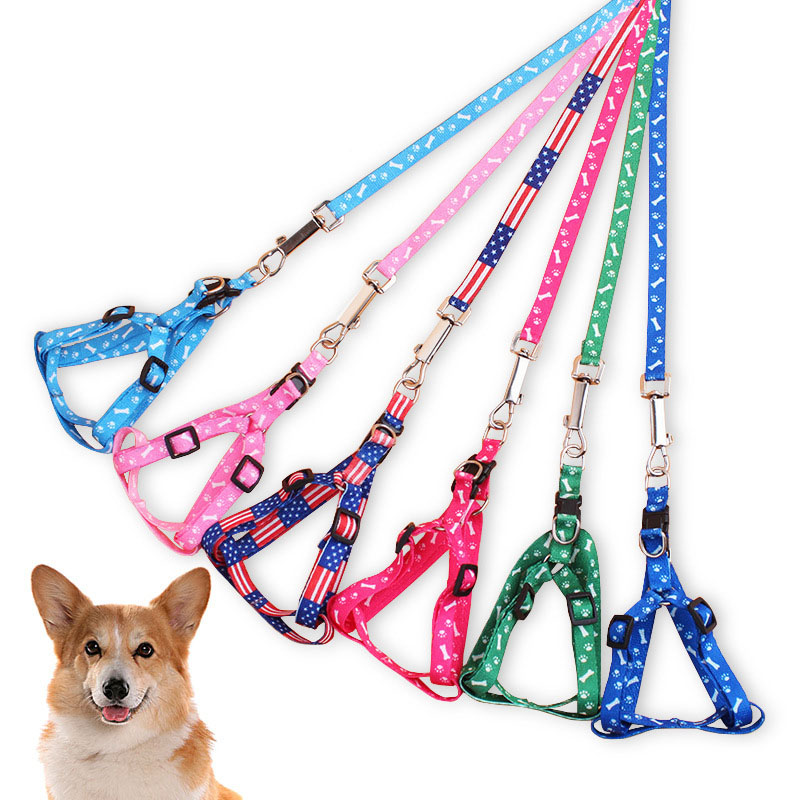 Puppy Harness and Leash Set Cute Printing Small Dog Harness Leads Nylon Walking Leash for Doggy Kitten Chihuahua Terrier Yorkie