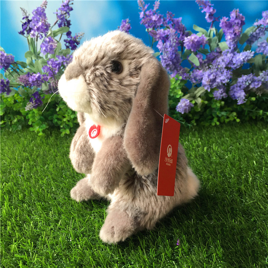 Online Get Cheap Conejo Ardilla Aliexpresscom  Alibaba Group