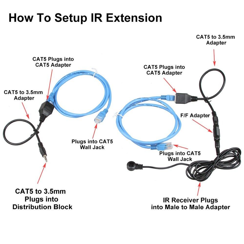 Male Cat 5 Diagram Wire Data Schema Wiring For Female Jack Explore Schematic U2022 Rh Appkhi Com Digestive System