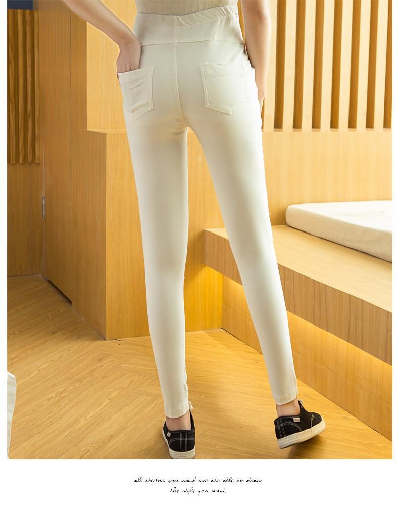 lady pants