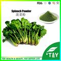 Wholesale organic dried spinach powder 500g/lot