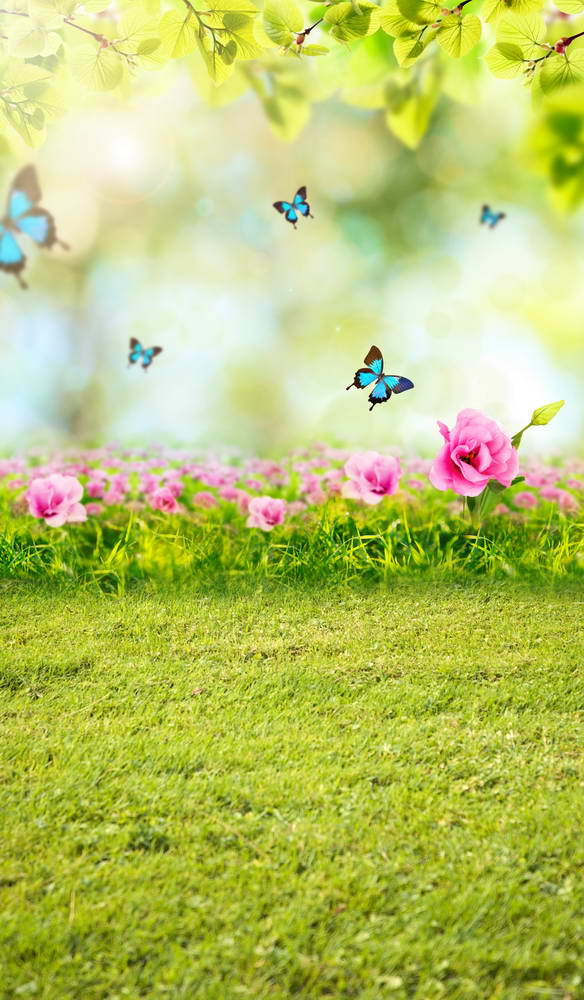 Camera fotografia spring picture for photography backdrops grass butterflies background for photo studio background F-2878 allenjoy backdrop spring background green grass light bokeh dots photocall kids baby for photo studio