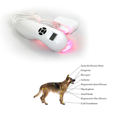 Powerful Veterinary Dog and Horse Cat Animals Pain Relief LLLT Therapy Device by 808nm Safety Cold Laser Machine veterinary use pets dog cat horse clinic wound healing device cold laser therapy phototherapy device for animals pain reliever
