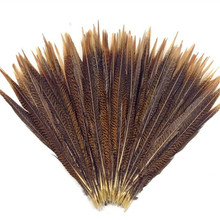 цена на 100Pcs/Lot Natural Golden Pheasant Center Tail Feathers for Crafts 30~70cm(12~28inch) Long Golden Pheasant Feathers Plumas Plume