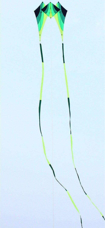 Livraison gratuite haute qualité marche ciel delta cerf-volant avec 15m queues poignée ligne weifang cerf-volant volant kiteboard jouets aquilone puissance - 4