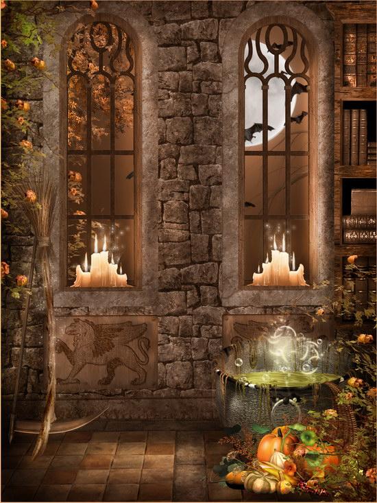 10x10ft Indoor Stone Wall Windows Books Candles Halloween
