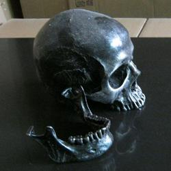 Free shipping halloween party decoration collective resin skeleton medical model lifesize realistic human skull replica.jpg 250x250