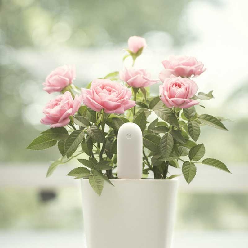 100-Original-Xiaomi-Mi-Flora-Monitor-Digital-Plants-Grass-Flowers-Soil-Water-Light-Smart-Tester-Sensor (2)