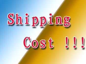 extra fee for shiping cost