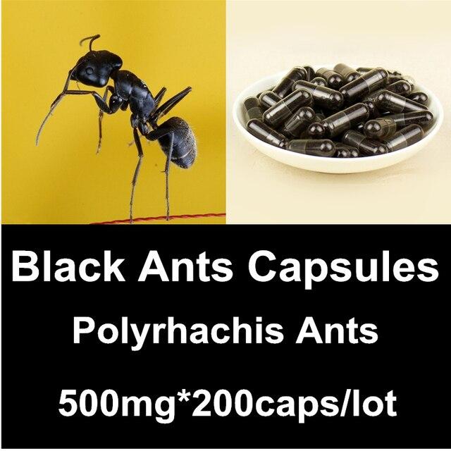 black ant kapsul semut hitam pusat vimax com agen resmi vimax