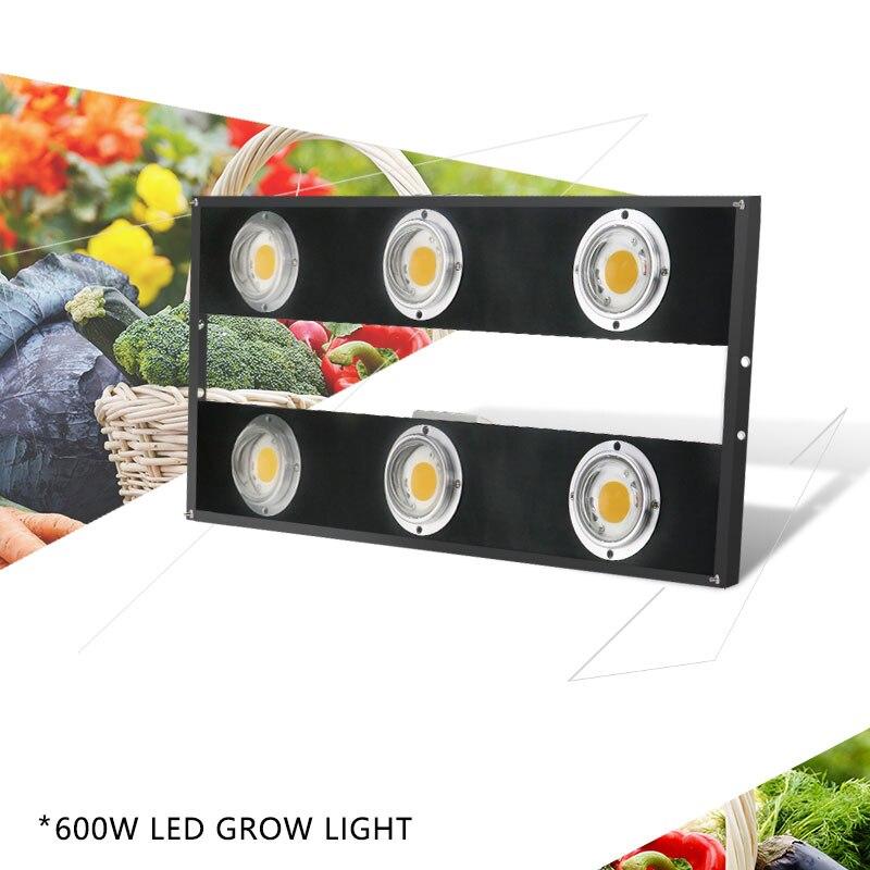 La puce 600 W de CREE de spectre complet COB + lentille LED élèvent la lumière pour la serre hydroponique d'intérieur élèvent la lampe commerciale de plantes médicales de tente