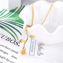 Fashion Jewelry Collier Pendant Necklace