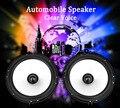 Emparejado LABO LB-PS1651D Automóvil Car HiFi Audio Frecuencia De la Gama Completa de Altavoces Del Automóvil Altavoz 6.5 Pulgadas Altavoz de Tono Alto