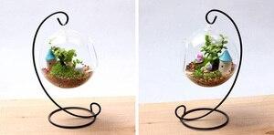 Image 2 - 10ピース/ロットD10xH23CM金属植物ハンガー白/黒フック植物ハンガー