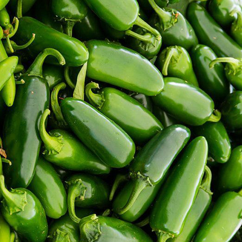 Online kopen Wholesale snel groeiende zaden uit China snel ...   800 x 800 jpeg 486kB