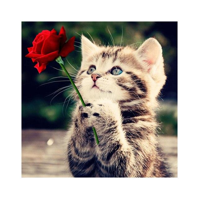 Рукоделие Красная Роза И Кошка 5D Алмаз Вышивка Живопись Животных Квадратных Узоры Горный Хрусталь Холст Вышивка Крестом Искусство Home Decor