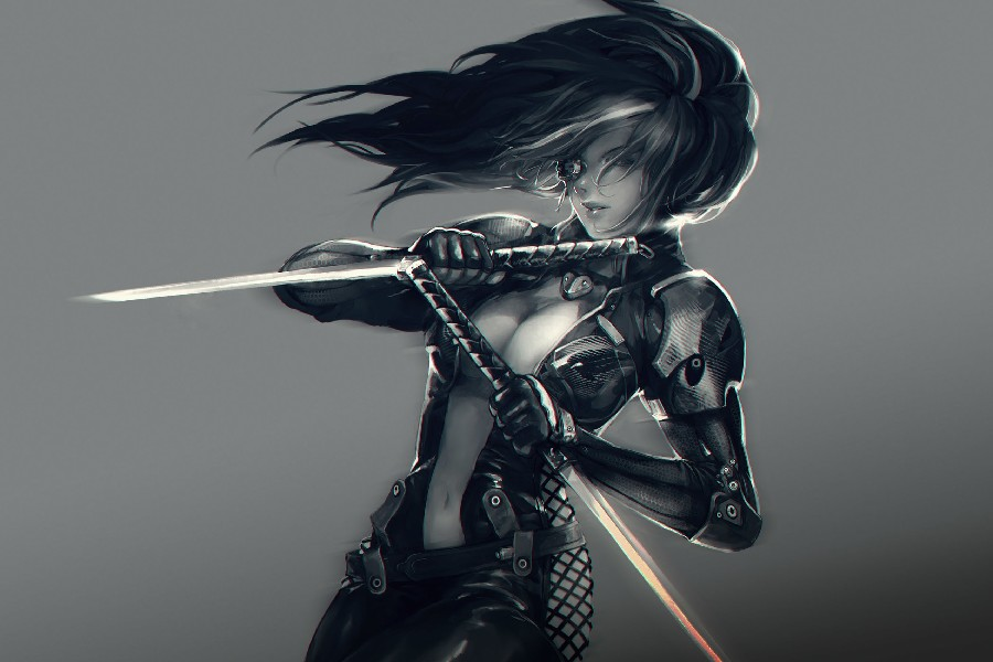 Sexy Girls With Swords