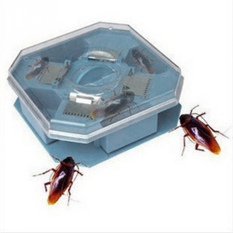 High Quality Reusable Plastic Non-Toxic Eco Blue Color Cockroach Bug Roach Motel Catcher Catch Insect Pest Killer Bait Traps