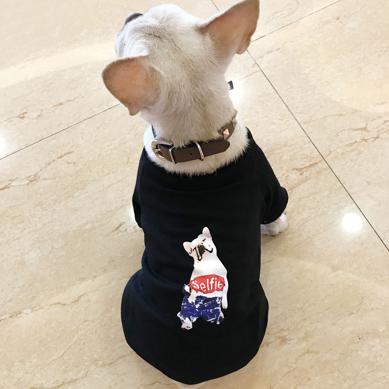 HSWLL Spring and autumn pet clothing spring and autumn Teddy bear French bulldog small dog sweater cat dog round neck print two