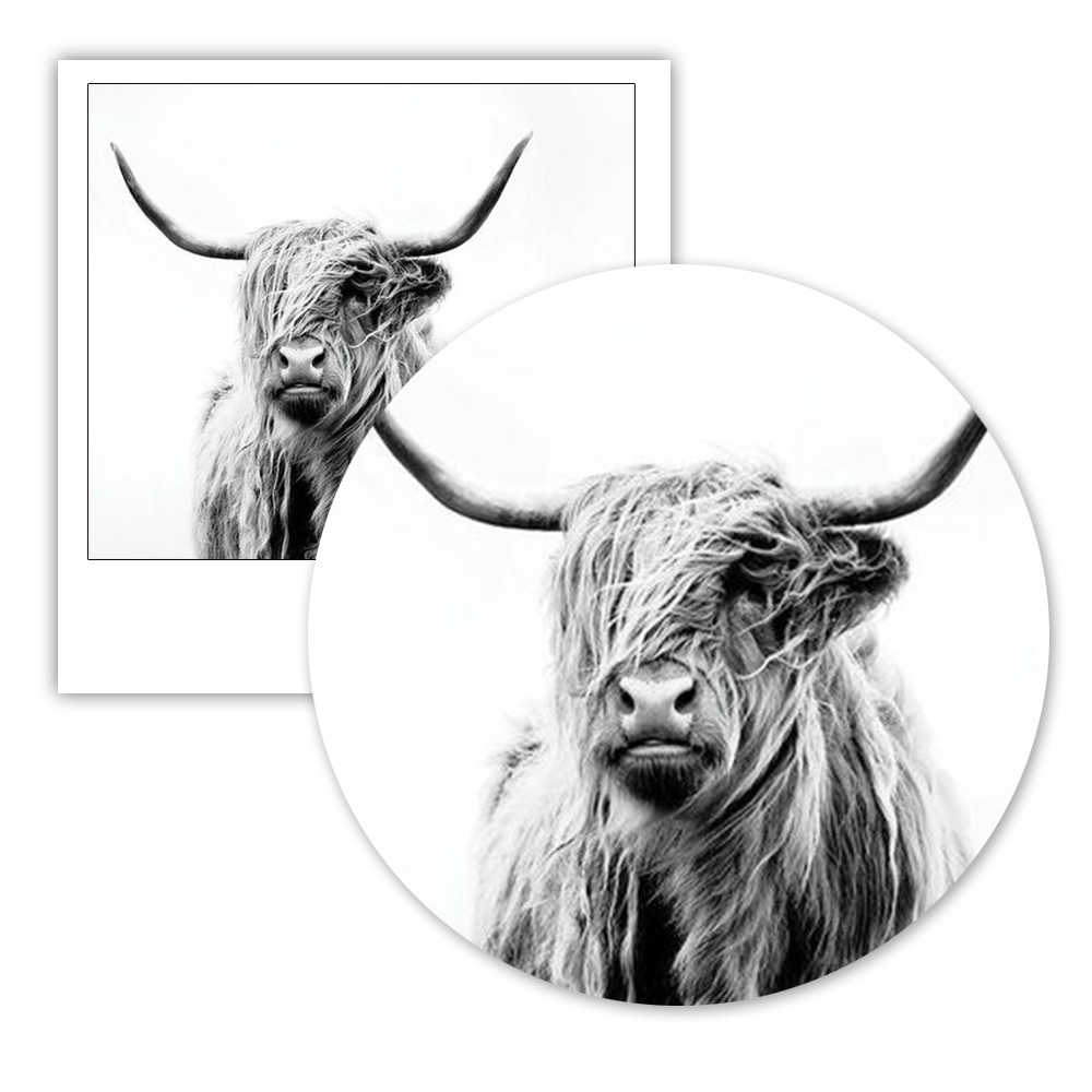 Highland Cow Print Black And White Farmhouse Decor Posters And Prints Farm  Animal Baby Boy Or Girl Nursery Art Canvas Painting
