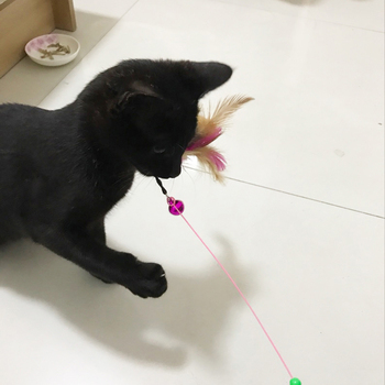 Different toys for cats 5
