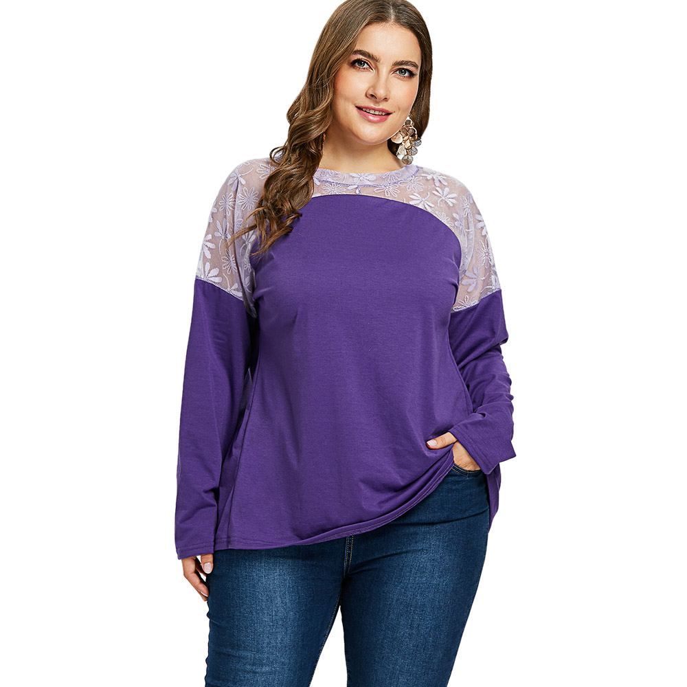 Plus Size Sheer Lace Panel T Shirt Women Long Sleeve Round