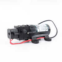 FREE SHIPPING 20m 30m 40m lift DC 12V 24V Diaphragm Pump Vacuum Pump Mini Pesticide water Pumps FL 22 series RV