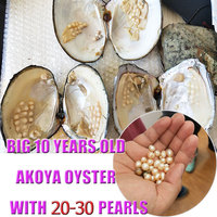 Natural Freshwater Oysters Pearls In Vacuum packed,20 30pcs Real Pearls inside Big Monster Oyster Pearls Shell Wish Gift PJW271