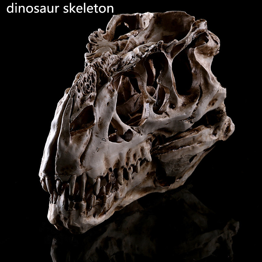 1PC Resin Crafts Dinosaur Tooth Skull Fossil Teaching Skeleton Model Halloween Drop Home Office Decoration