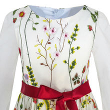 Elegant Embroidered Long Sleeve Party Dress