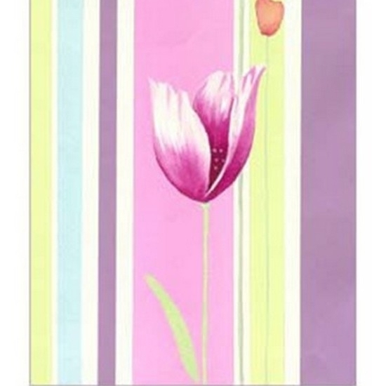 Flowers & Stripes III Poster Print by Vision studio (13 x 19)